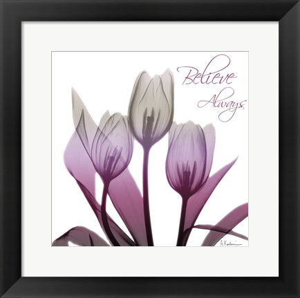 Framed Ombre Tulips Print