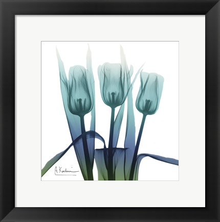 Framed Blue Ombre Tulips Print