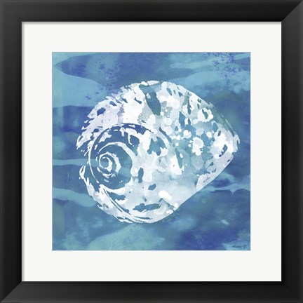 Framed Shell 2 Print