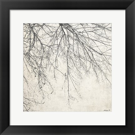 Framed Branches 2 Print