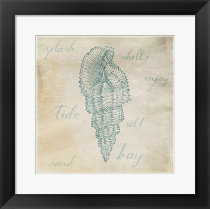 Framed Stamped Shell Mate Print