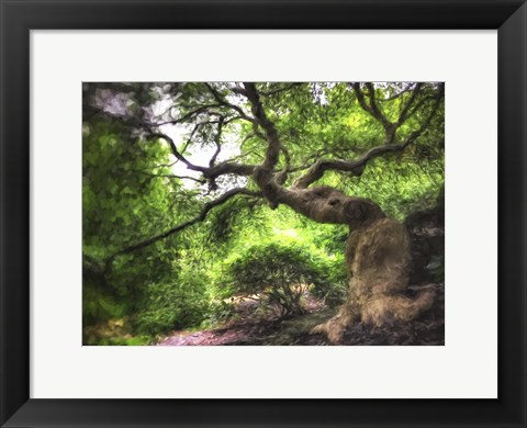 Framed Japanese Tree Painted Print