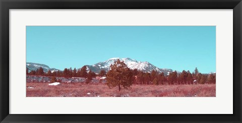 Framed Mammoth Mountain Print