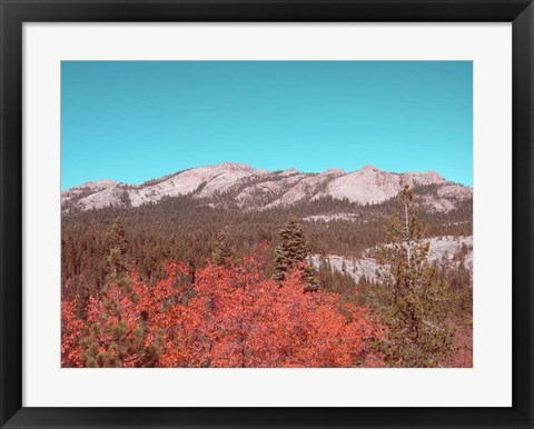 Framed Sierra Nevada Mountains Print