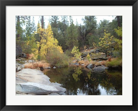 Framed Lake In The Forest Print