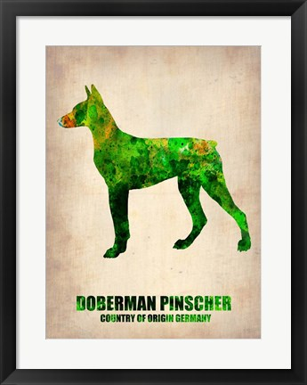 Framed Doberman Pinscher 2 Print