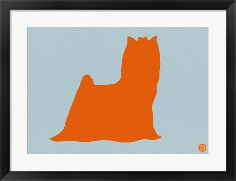 Framed Yorkshire Terrier Orange Print