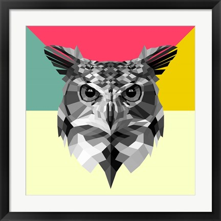 Framed Owl Head Print