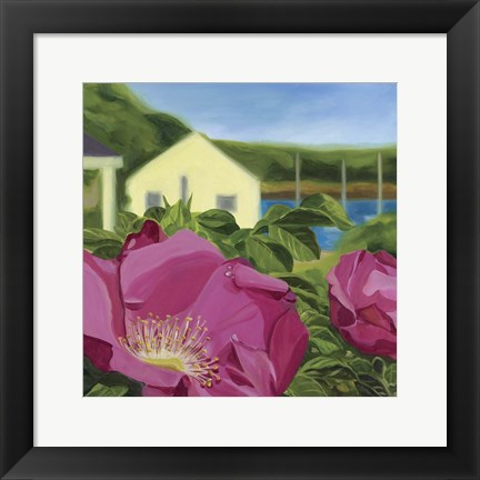Framed Beach Rose Print