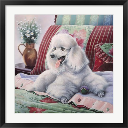 Framed White Poodle Print