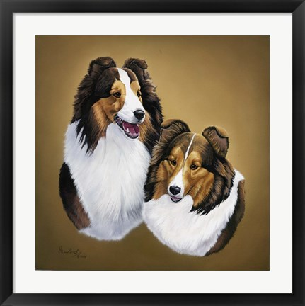 Framed Collies 2 Print