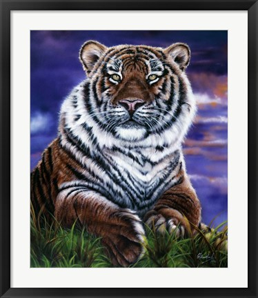 Framed Arizona Tiger Print