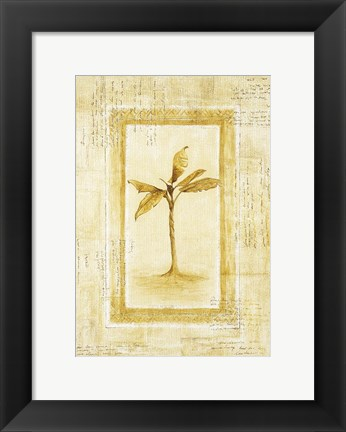 Framed Palm 2 Print