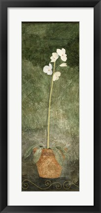Framed White Potted Flower Print