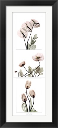 Framed Flowering Triptych Print