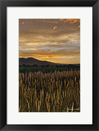 Framed Sunset Over Bear Tooth Print