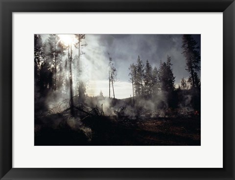 Framed Granite Fire II Print