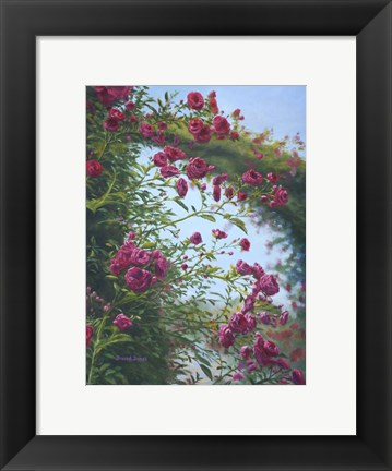 Framed Rose Burst Print