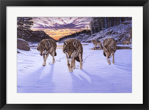 Framed Born To Be Wild Print