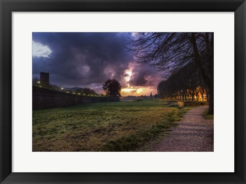 Framed Walk in the Park Print