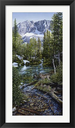 Framed Wilderness Family Print