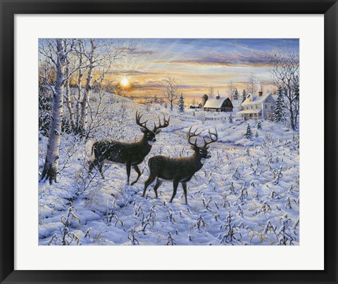 Framed Two Deer In The Moonlight Print