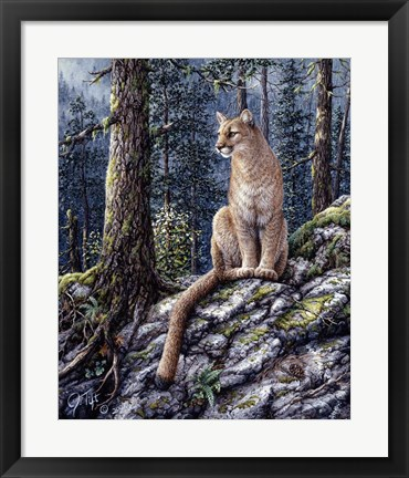 Framed King Of The Forest Print