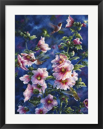 Framed Hollyhocks And Hummingbirds Print