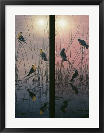 Framed Red Winged & Yellow Headed Blackbirds Print