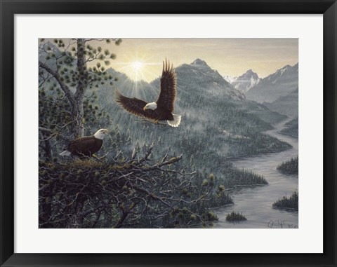 Framed Eagles Nest Print