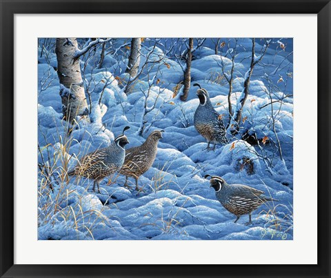 Framed Winter Covey Print