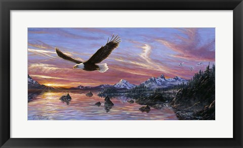 Framed Silent Wings Of Freedom Print
