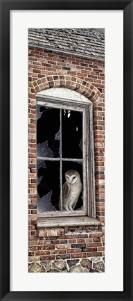 Framed Look Out Print