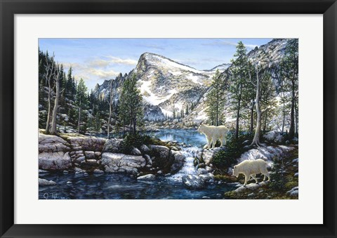 Framed Summer In The Enchantments Print