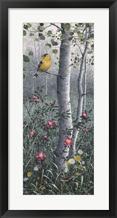 Framed Shades Of Summer Print