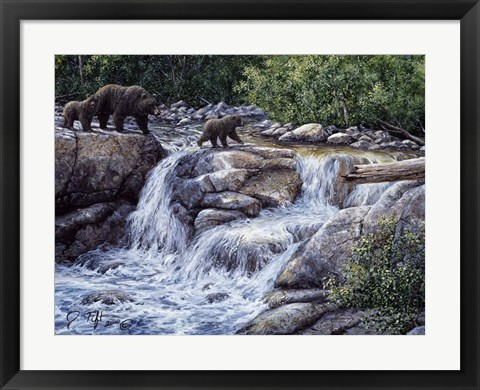Framed Entiat Falls-Grizzly Family Print