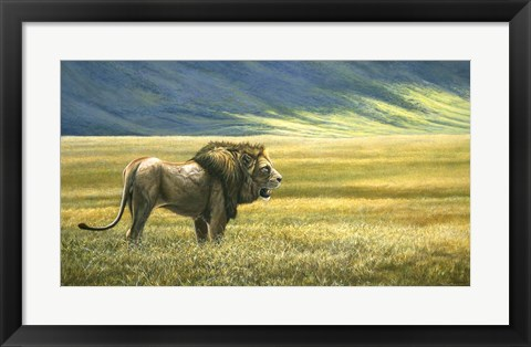 Framed His Domain Lion Print