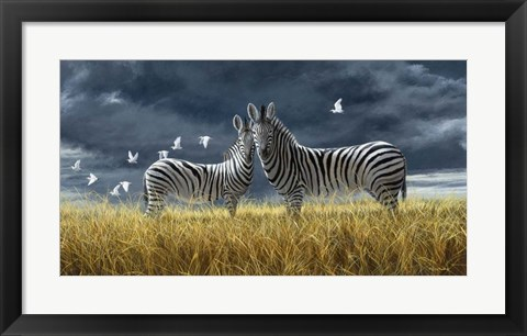 Framed Coming Of Rain Zebra Print