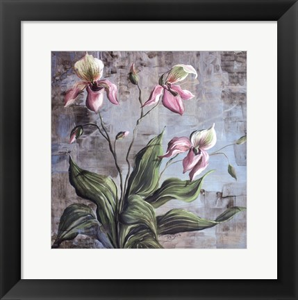Framed Orchid Study In Pink Print