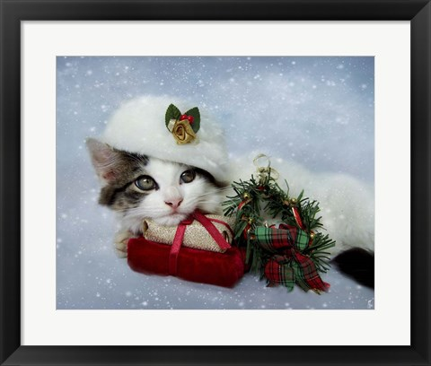 Framed Christmas Kitten In The Snow Print