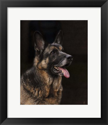 Framed Classic German Shepherd Print