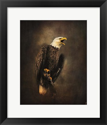 Framed Crying for the Lost Bald Eagle Print