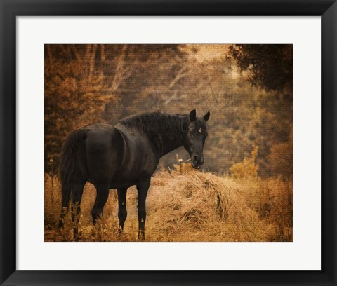 Framed Horse And The Haystack Print