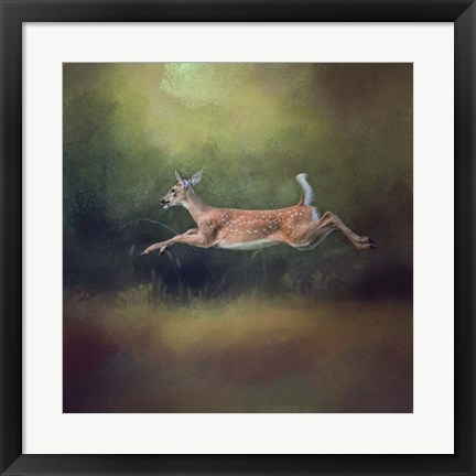 Framed I Can Fly White Tailed Fawn Print
