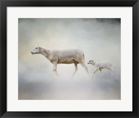 Framed In My Mothers Footsteps Sheep and Lamb Print