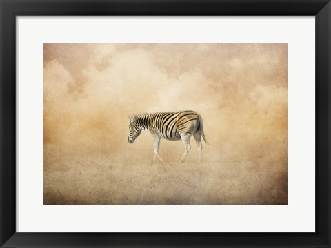 Framed Indian Summer Zebra Print