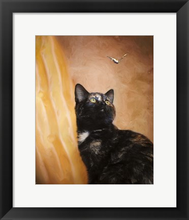Framed Kitten And The Butterfly Print