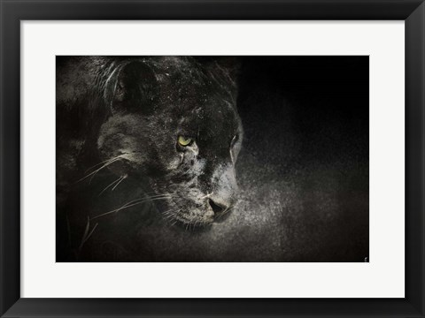 Framed Out Of The Shadows Black Leopard Print