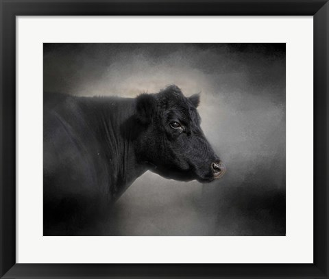 Framed Portrait Of The Black Angus Print