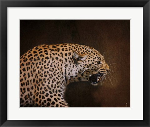 Framed Snarling Leopard Print